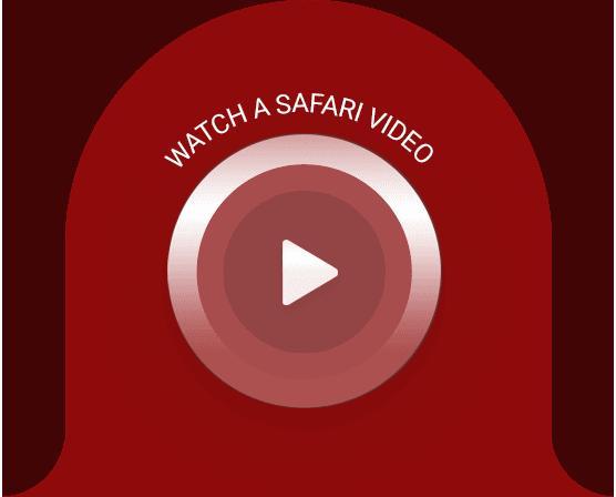 Watch a Safari Video